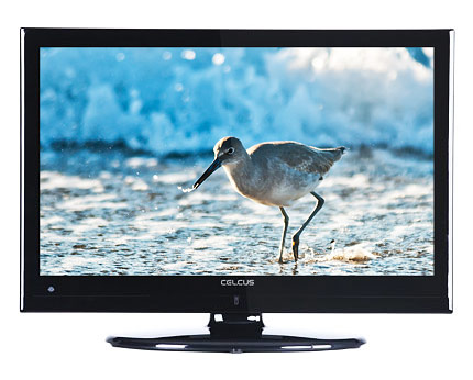 Celcus LCD40S913FHD 40-inch Full HD Budget TV
